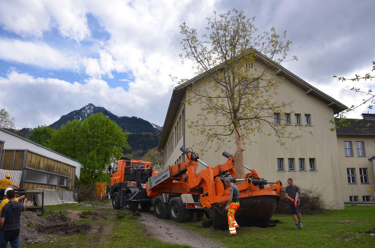Vorarlberg: Schwerverletzter nach Raub in Frastanz - menus2view.com